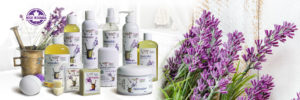 Sugar and Spice Bath and Body Care Lavender Natural Products made in Canada Maple Ridge BC Banner